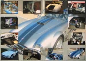 Cobra-Restoration-Collage-on-Canvas