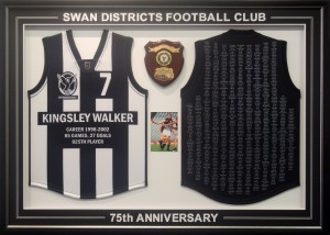 Front-and-Back-Swan-Districts-Framed-shirt
