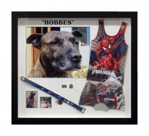Framed-Dog-Collage