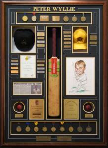 Framed Cricket Achievements Collage