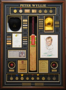 Framed Cricket Achievements Collage