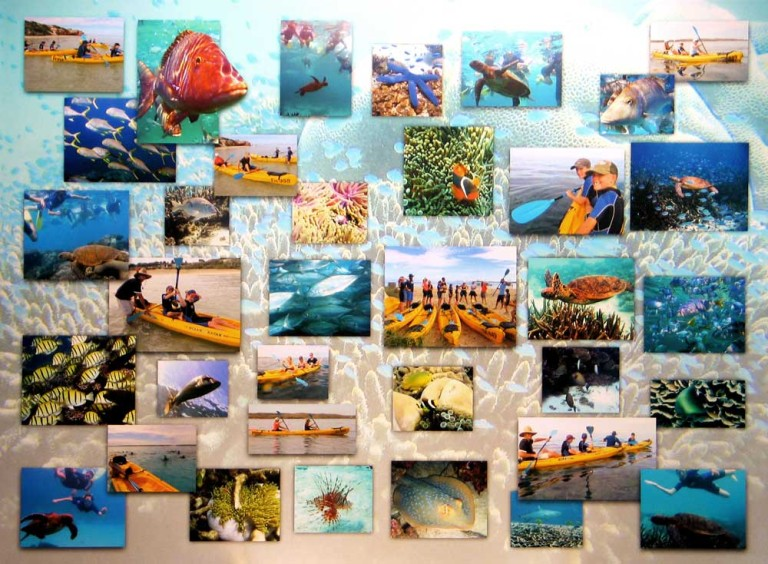 Photo Collage printed Stretched on Canvas