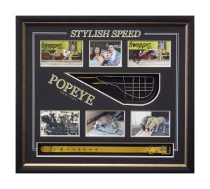 Framed Greyhound-Racing-Memorabilia