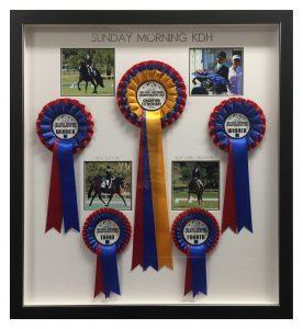 Framed-Horse-Rosettes