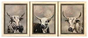 Framed-Canvas-Cow-Prints